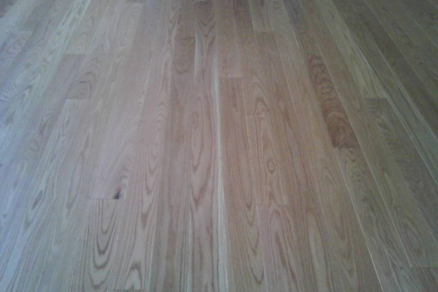 Five Inch Red Oak