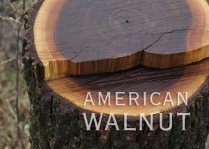 Adirondack Walnut
